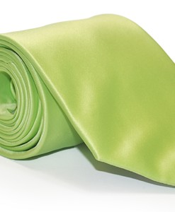 large_lime1391703788127